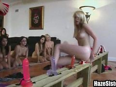 Blonde, College, Babe, Teen, Dildo, College sugar