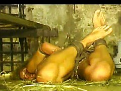 Japanese anal torture