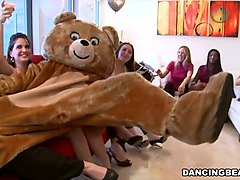 Party, Dancing bear fucj bride