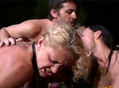 Anal, Rough, Orgy, Ass, Rough cry anal