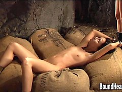Slave, German dominas use slave for pussi licking