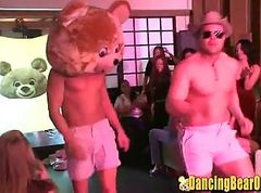 Wet, Amateur dancing bear